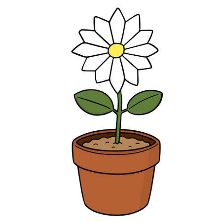 Vector of flower