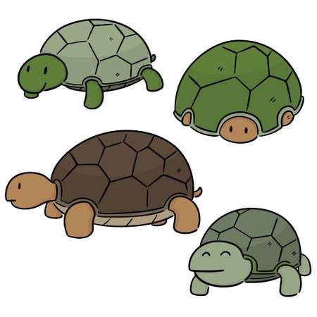 vector set of turtle Illustration