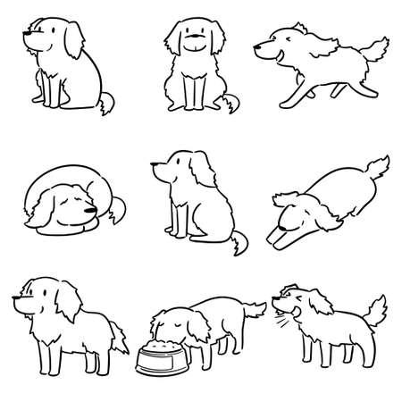 vector set of dog, golden retriever