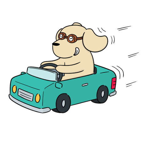 vector of dog driving car