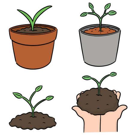 vector set of planting tree
