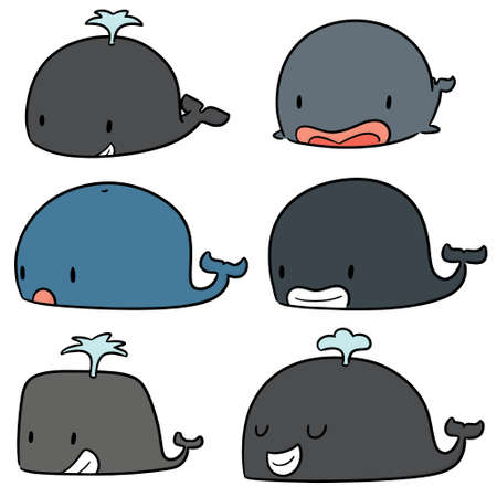 vector set of whale Illustration