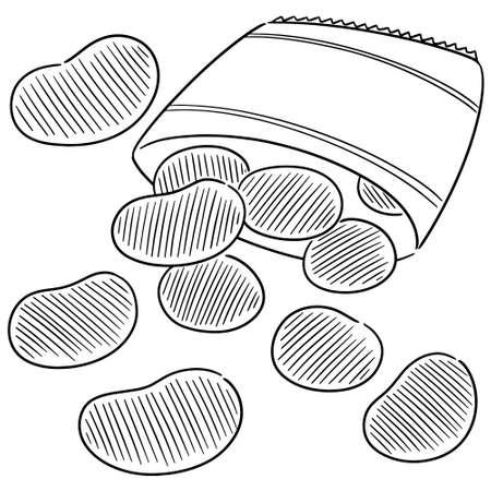 vector of potato chips  イラスト・ベクター素材