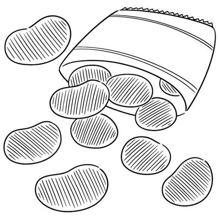 vector of potato chips 向量圖像