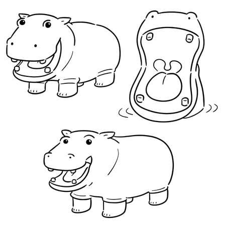 vector, conjunto, de, hipopótamo