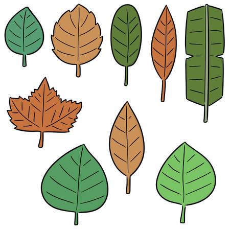 vector set of leaves Векторная Иллюстрация