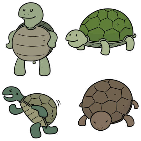 vector set of turtle Vectores