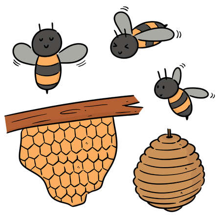 vector set of bee and honeycomb