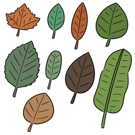 vector set of leaves Standard-Bild - 151581747