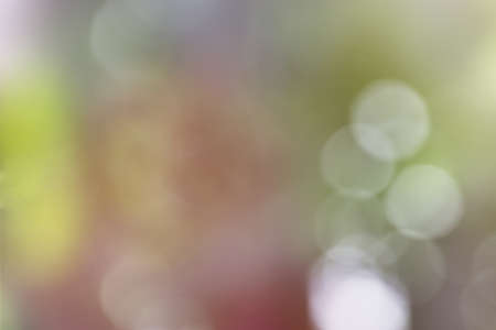transparent colour photo