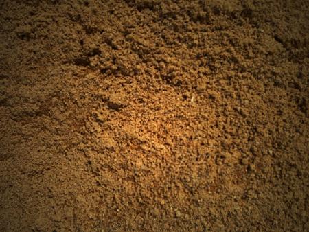 sand beach Stock Photo