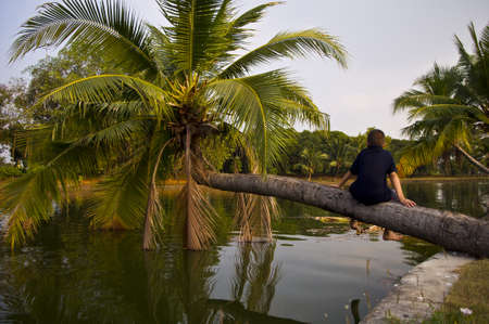 lonely boy: The lonely boy sitting on coconut tree. Stock Photo