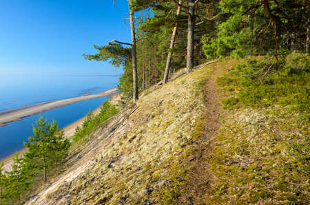 Footpath goes on the steep bank. Baltic Sea coastline, Latvia.