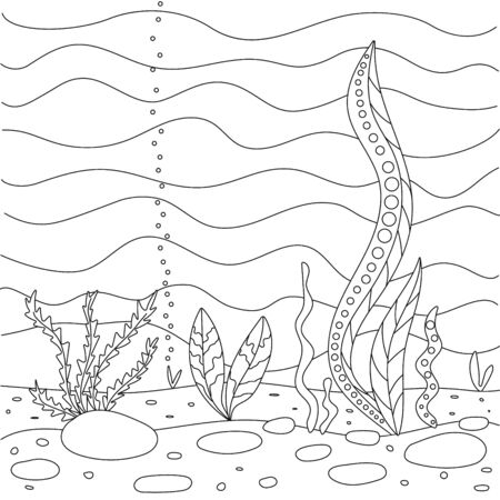 Vector illustration with algae, sea bottom. Simple funny childrens drawing. Cute coloring book for small children. Black lines, sketch on a white background.