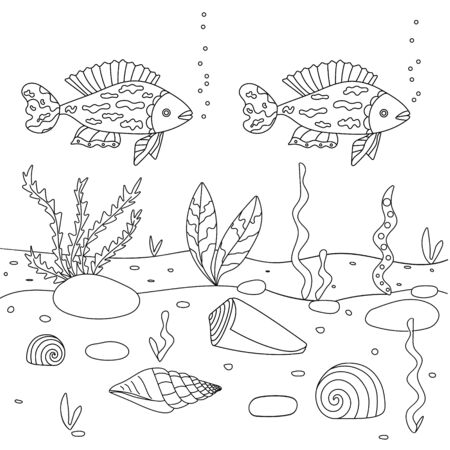 Vector illustration with algae, shell and fish, sea floor. Cute square page coloring book for children. Simple funny kids drawing. Black lines, sketch on a white background. Ilustração