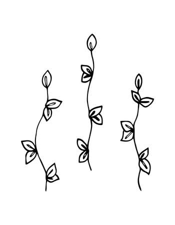 Hand drawn vector illustration set of simple black line twigs or grass,on a white background, sketch, Doodle, silhouette, shape.