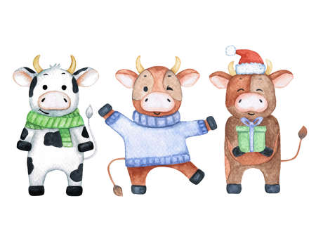 Watercolor illustration with three funny bulls. Cute animals in winter clothes. Cartoon and childish characters Banque d'images