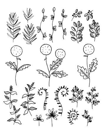 Set of twigs, grass, flowers of different shapes. Doodle style outline, sketch, silhouette. Hand drawn vector illustration.