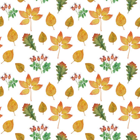 Seamless pattern with autumn leaves and rosehip branches. Watercolor illustration for textiles and decor Banque d'images