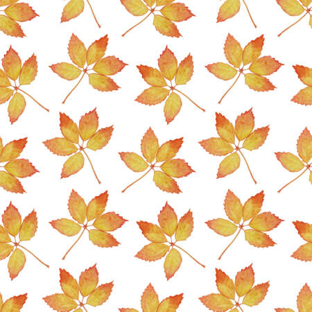 Bright seamless pattern with large leaves. Autumn watercolor illustration for decor and textiles Banque d'images
