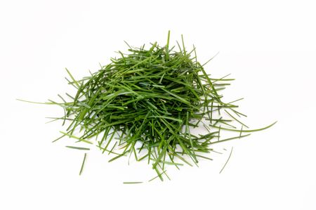 Pile of fresh green grass displayed on white background. photo