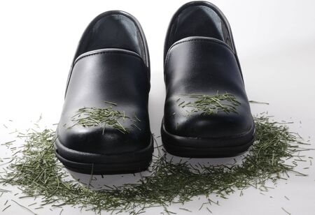 black shoes over grass Stock Photo