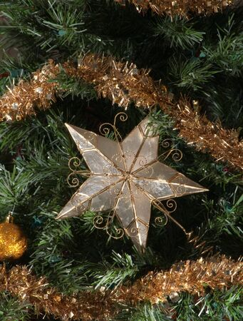 Star surrounded by pine and christmas ornaments
