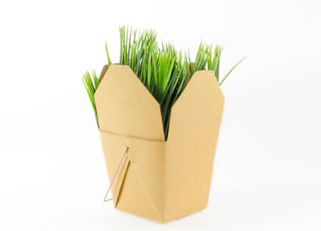 cut grass: Brown grocery box with grass inside over white background Stock Photo