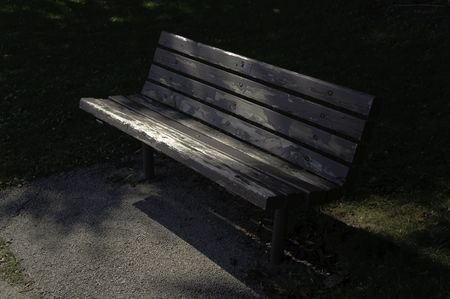 Empty park bench in local recreation area Stock Photo
