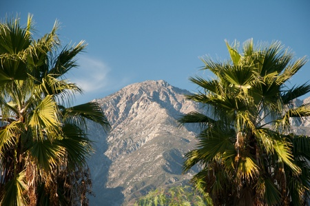 Mountains nature and palm trees under a Bright blue sky daylight photo