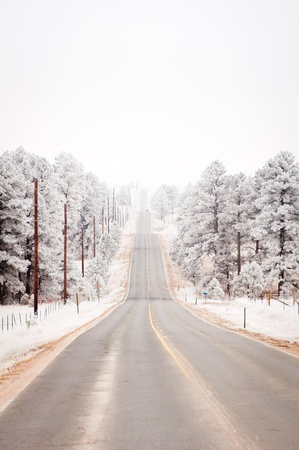 Snowy road under freezing white sky on the country side photo