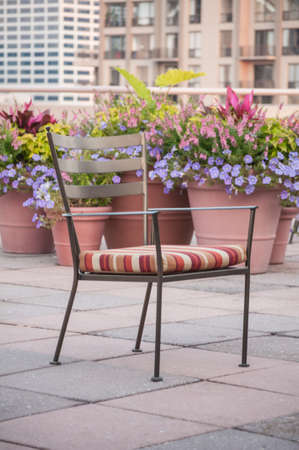 Rooftop garden chair surrounded by colorful spring flowers vases photo