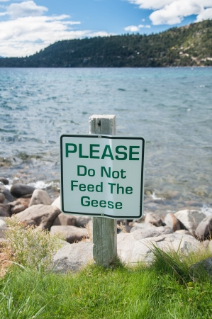 Do not feed the geese sign on outdoor park by the lake photo