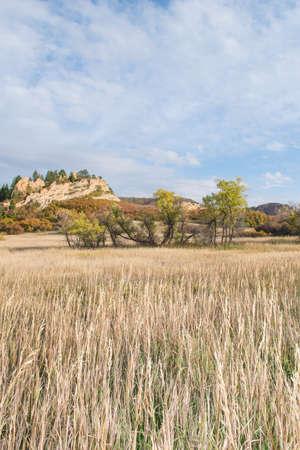sean: erba alta, alberi e la montagna mostrando colori di caduta sean