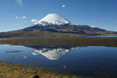 nationalpark: Brilliant volcan parinacota (reflection), nationalpark lauca, northern chile