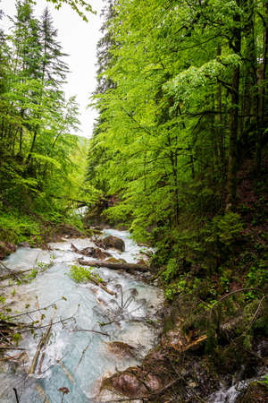 A lot of Waterfalls in the Wimbacklamm in Bavaria Berchtesgaden with stones and green plants and trees