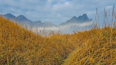 A dune overgrown with golden-green grass. In the back a chain of mountains marks its presence. A slight sun beam spreads through the mountains. Remedy for nature lovers. Tender landscape.