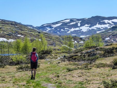 A girl with a big backpack hikes through the highlands of Norway. The trail is barely marked. Fresh green grass. Taller mountains in the back covered partially with snow. Wilderness and freedom