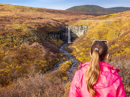 A girl wearing a pink jacket standing in a distance, admiring the beauty of Svartifoss waterfall. The waterfall is surrounded by golden grass. The gorge is full of small stones. Autumn vibes