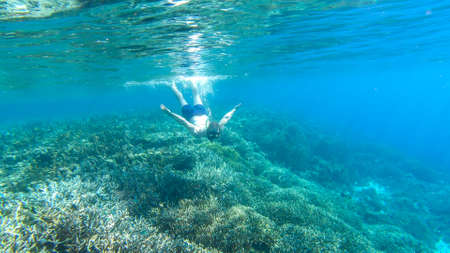 A man in masker and fins snorkelling in a vivid coral reef in Komodo National Park, Indonesia. The man is diving to see the reef from closer. Crystal clear water. Air bubbles around him. Free diving.