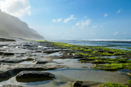 A view on idyllic, stony Nyang Nyang beach, covered with algae and seaweed, Bali, Indonesia. There are cliff on the side. Black lava beach. Discovering and exploring new places, hidden gem. Clear day. Foto de archivo