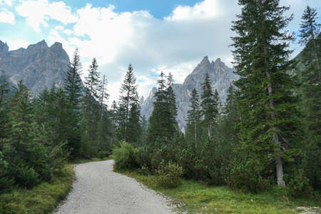 A gravel road through a forest, leading to high and sharp Italian Dolomites. The road is very curvy. There are thick clouds above the mountain peaks. Idyllic landscape. Isolated and remote place