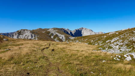 A panoramic view on Hochschwab mountain chains from the pathway leading to Hohe Weichsel. There is a vast pasture on top of a mountain, slowly turning golden. Clear view. Blue sky above. Autumn vibe 스톡 콘텐츠