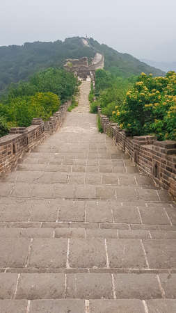 A panoramic view on a renewed Jinshanling part of Great Wall of China. The wall is spreading on tops of mountains. Many watchtowers on the peaks. Dense forest around it. World wonder. Tradition