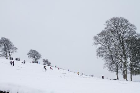 sledging: Bambini che giocano nella neve in discesa slittino