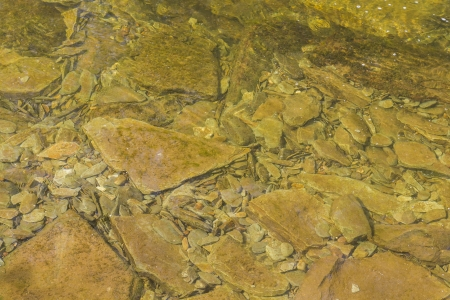 river bed: River bed closeup of stones in a stream Stock Photo