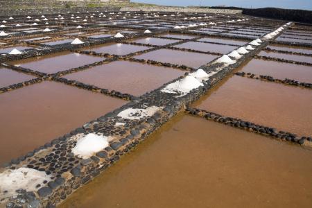 Fresh sea salt  Salinas del Carmen  Fuerteventura