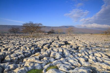 Pavimento de piedra caliza en Ingleborough en los valles de yorkshire Foto de archivo