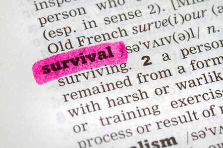 Dictionary definition of the word Survival Stock Photo