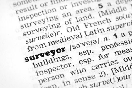 definition define: Dictionary definition of the word surveyor